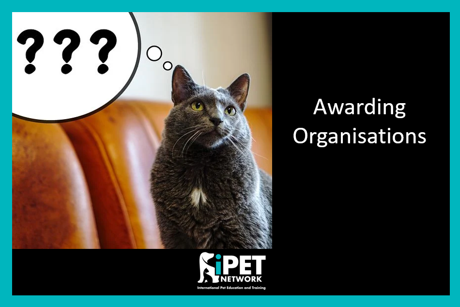 Awarding Organisations