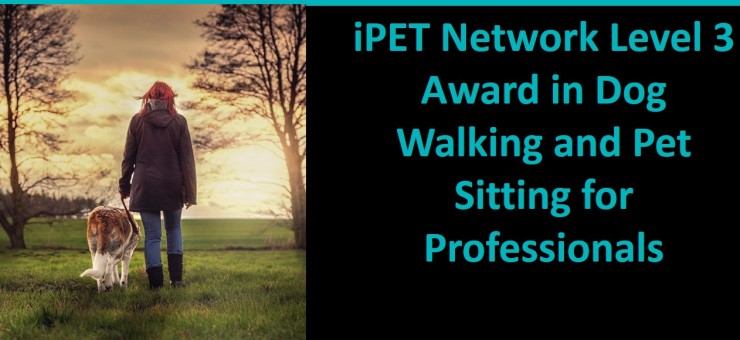 iPET Network are proud to announce our new Level 3 Award in Dog Walking and Pet Sitting for Professionals Qualification.