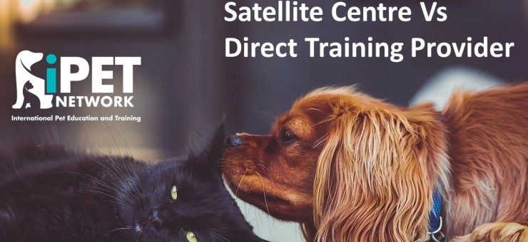Satellite Centre vs Direct Training Provider – which route is best for you?