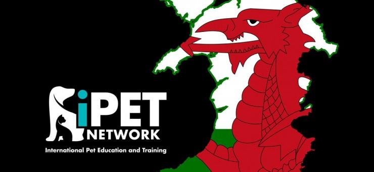 We need you Wales!