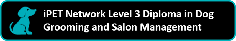 iPET Network Level 3 Diploma in Dog Grooming and Salon Management