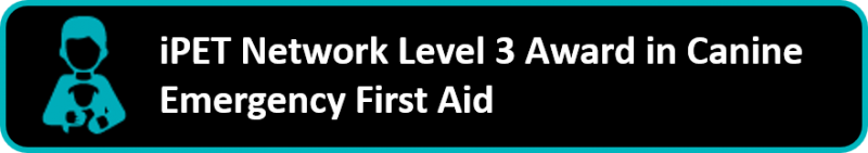 iPET Network Level 3 Award in Canine Emergency First Aid