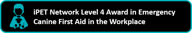 iPET Network Level 4 Award in Canine Emergency First Aid in the Workplace